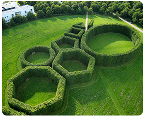 gardens11