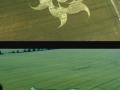 Goldenball Hill East Field, July 14, 2000